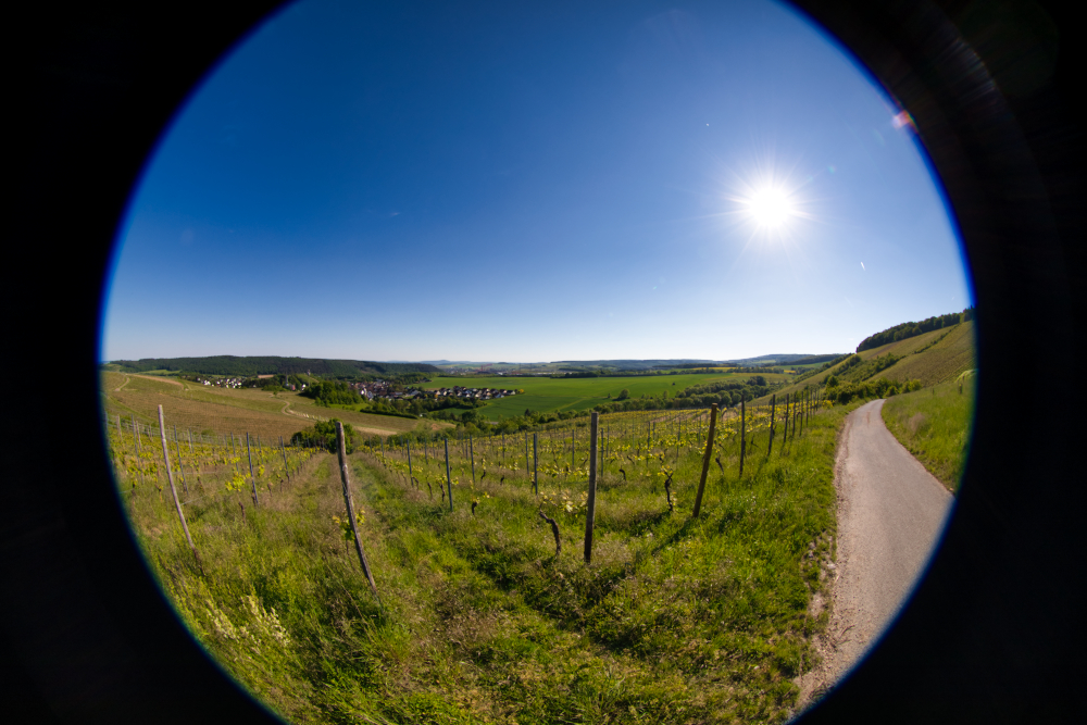 Fisheye - 10mm
